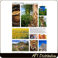 POSTER  L'APICULTURE
